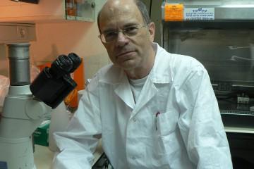 פרופ' יוסף שילה מאוניברסיטת תל אביב זכה בפרס ישראל